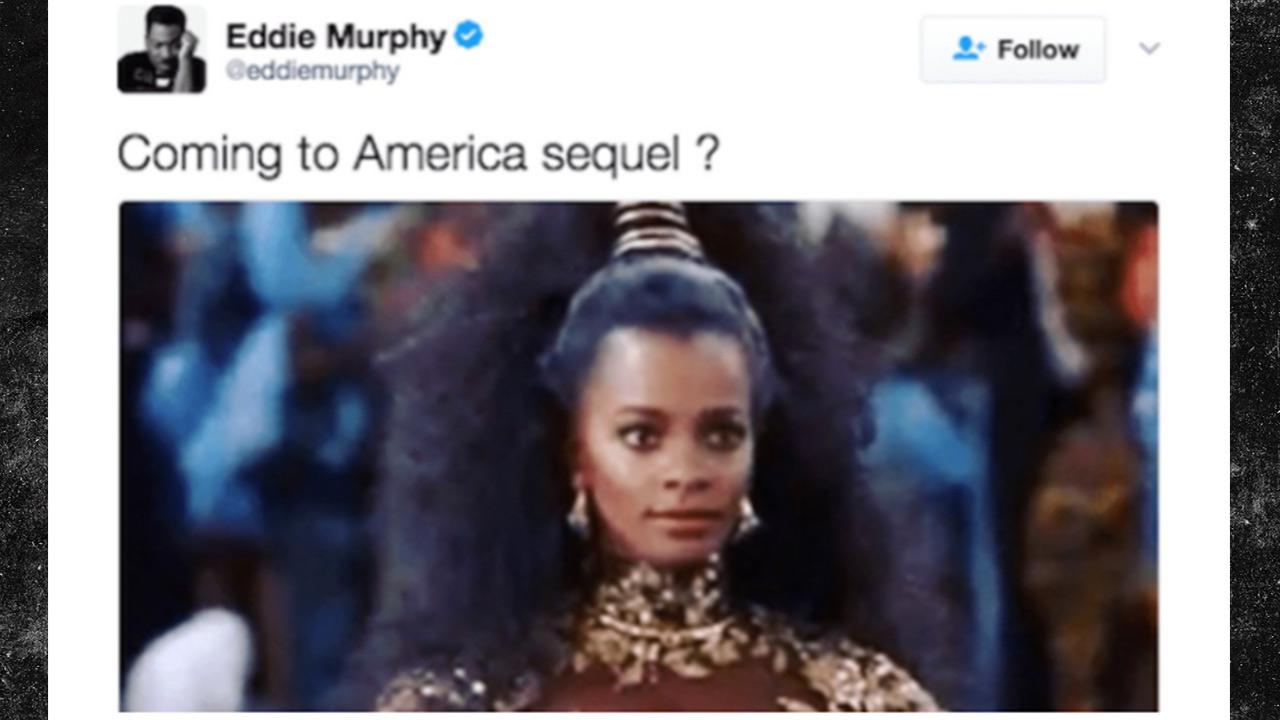 "TMZ interviews Vanessa Bell Calloway about Eddie Murphy's ""Coming to America"" Sequel tweet!"